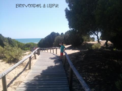 Camino de la playa Los Enebrales