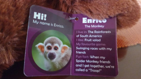 Enrico, The monkey