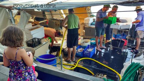 Aprendiendo el arte de la pesca en Cambrils