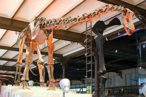 Museo de Ciencias, Museos en FLandes para ir con niños